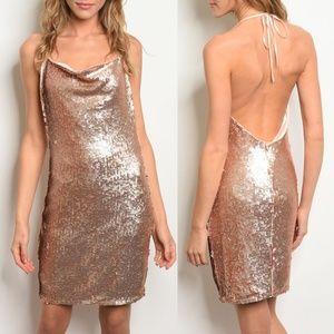 Rose Gold Dress {Alythea}